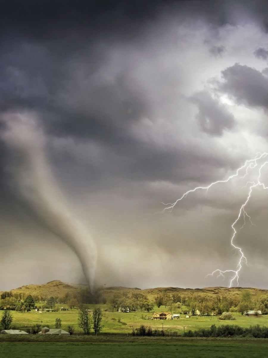 Serenade in the tornado